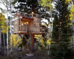 Tree house architecture for grownups