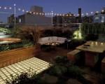 Roof garden oasis