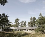 Single volume house in the woods