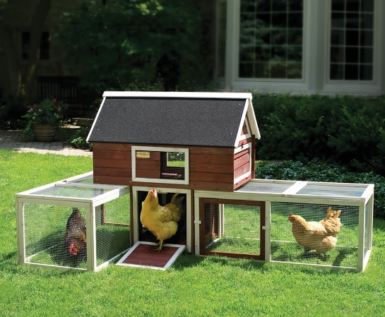 Cage-free backyard poultry house
