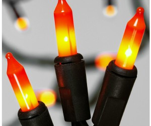 Festive Halloween light set