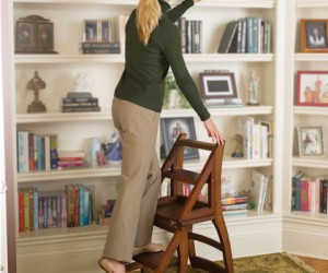 Library essentials: resourceful ladder chair