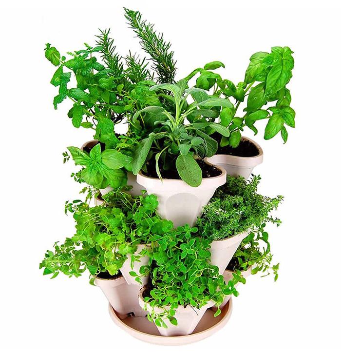 Mini-Garden-Planter-1