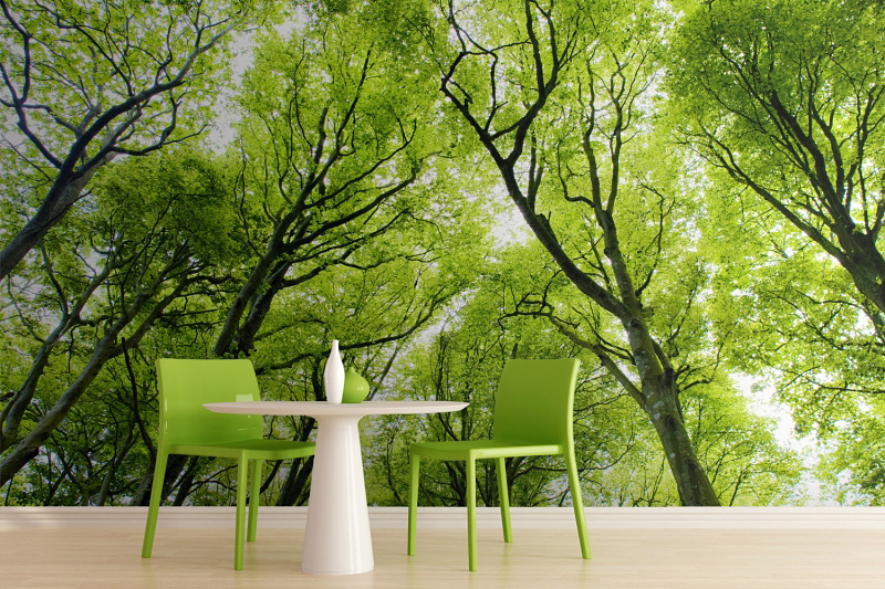 Green-Forest-Wall-Mural