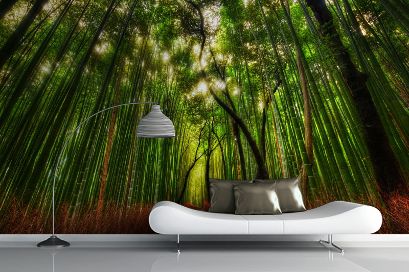 Forest wall murals for a serene home decor adorable home for Bamboo forest wall mural