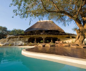 Wild ideas and inspiration: organic home, Zambia