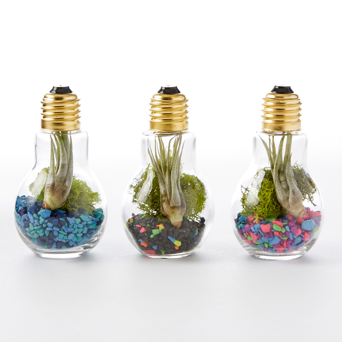 Follow the above steps for the Light Bulb Terrarium, then just add water! Add some sea shells, too, or a tiny ship. Note that the only other difference is the base. If you choose a stone like we did, use a glue gun to adhere the bulb.