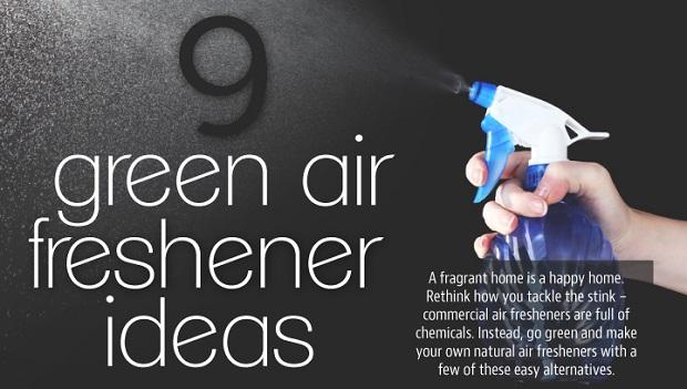 9 Green Air Freshener Ideas Adorable Home