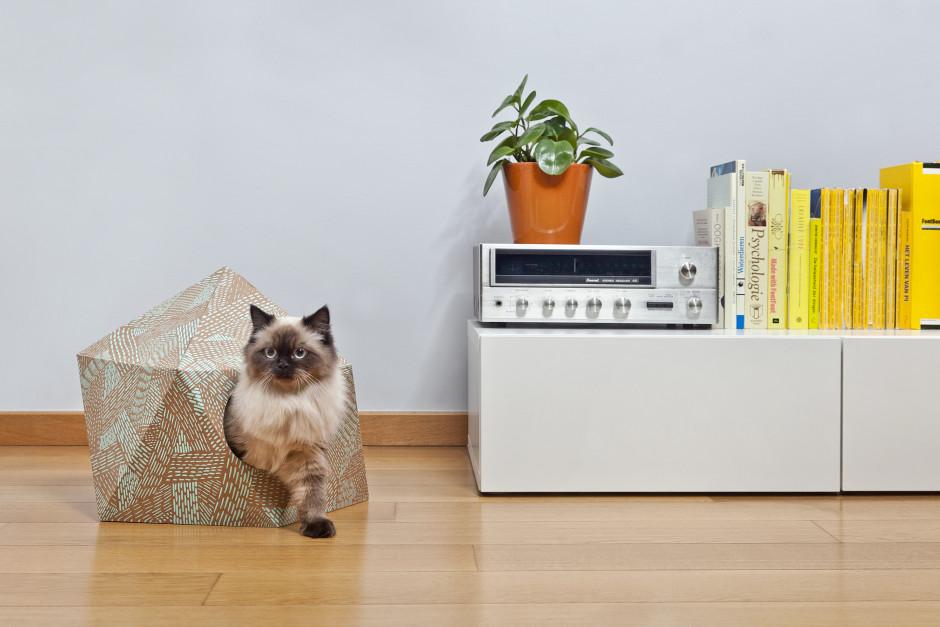 Feline Indulgences - The Catcube