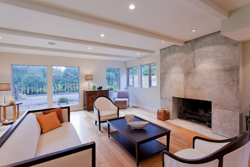 White living room with concrete fireplace