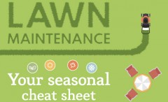 Lawn Care Seasonal Cheat Sheet