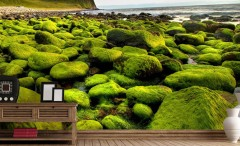 Mossy shore wallpaper