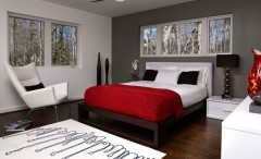 Modern bedroom in gray and red