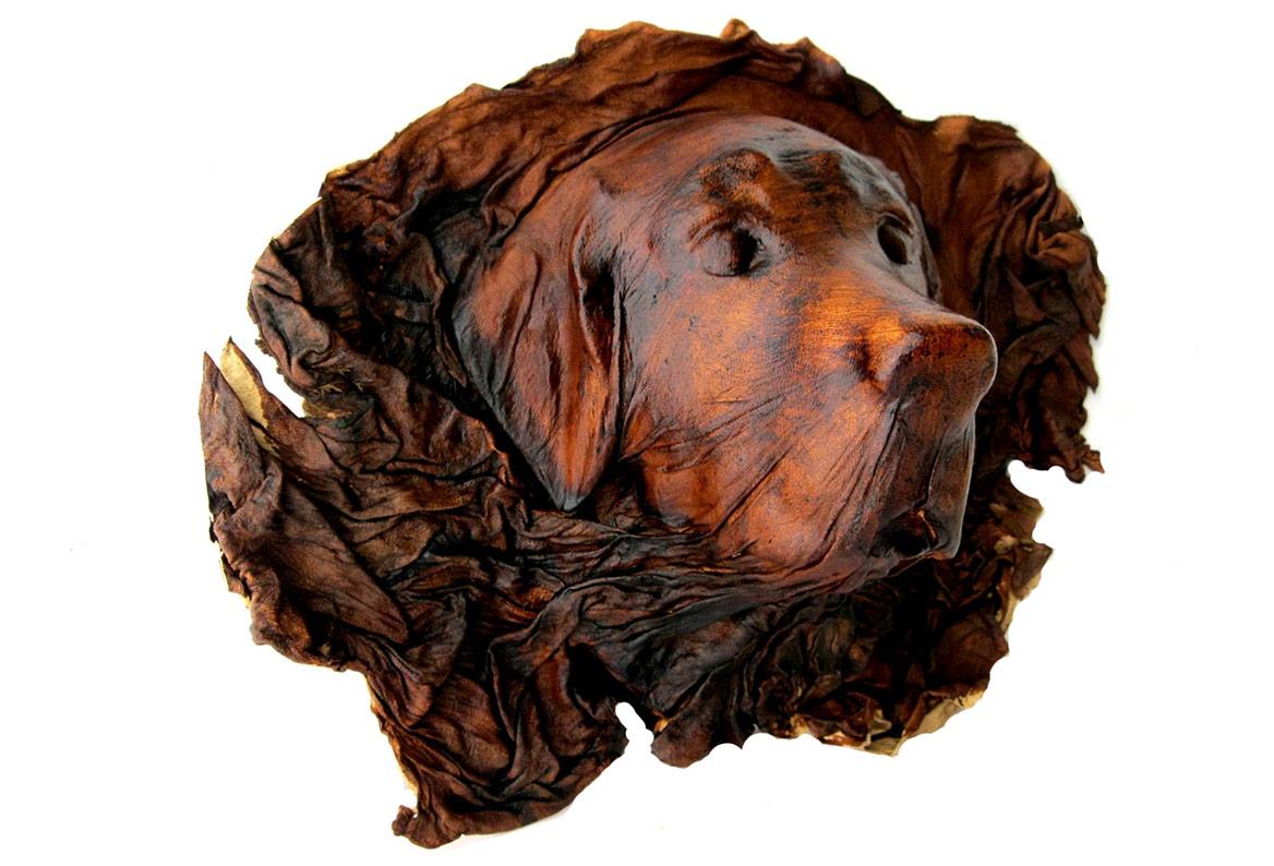 Leather dog head wall decor