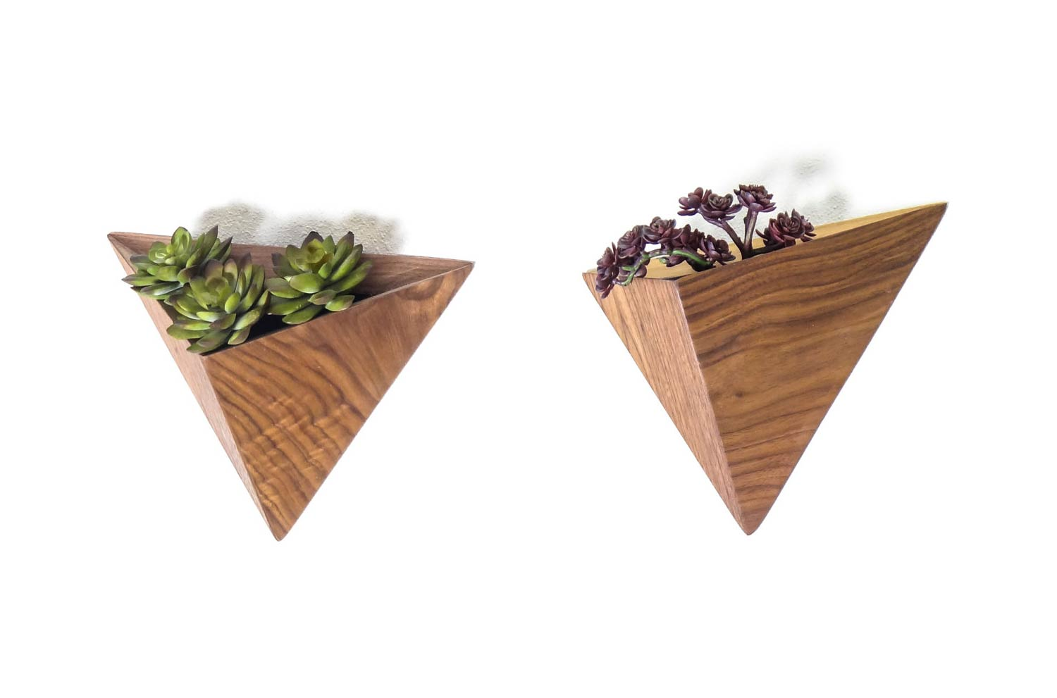 Succulent planters - wall decor