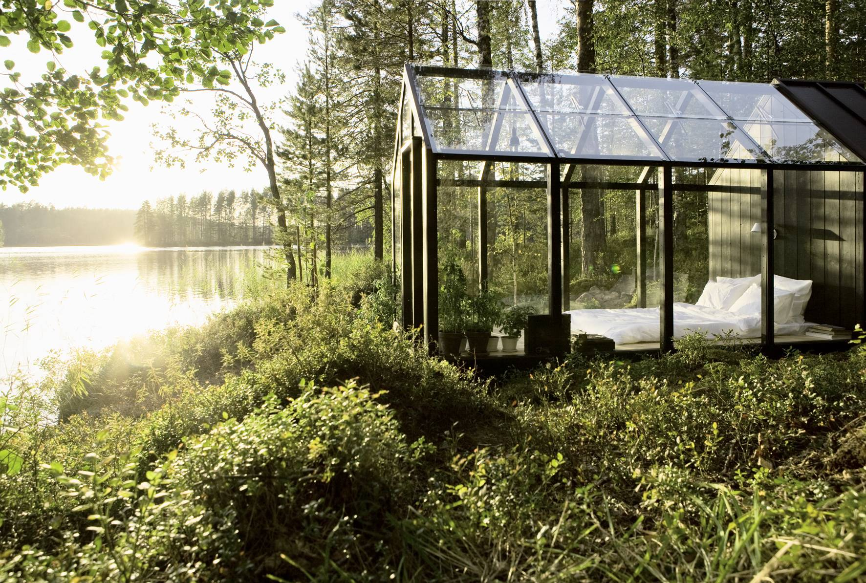 Glass bedroom in the forest