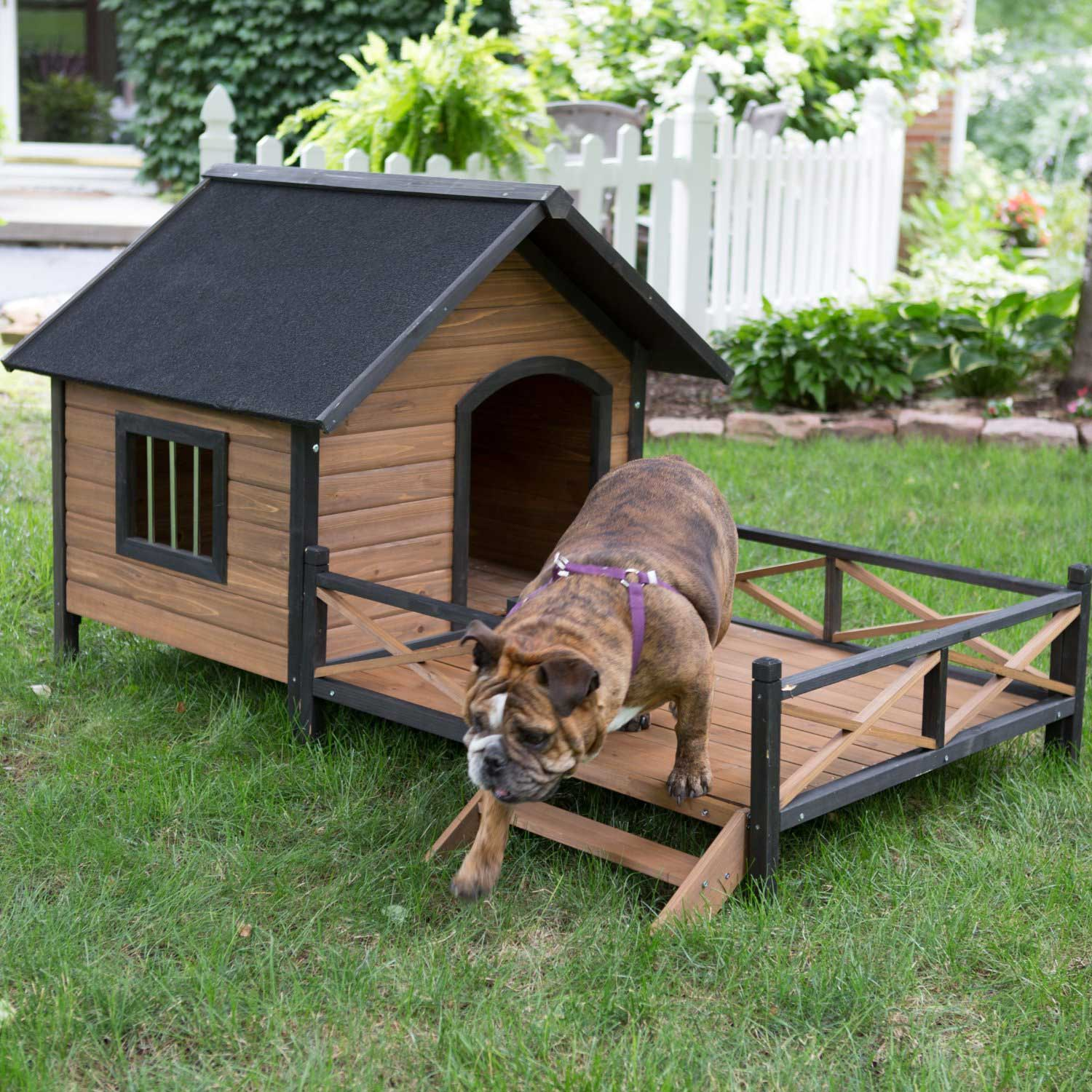 The Most Adorable Dog Houses Ever! (some Of Them You Can