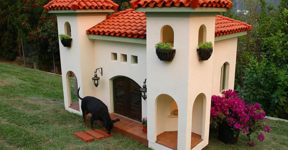 Adorable luxury dog house