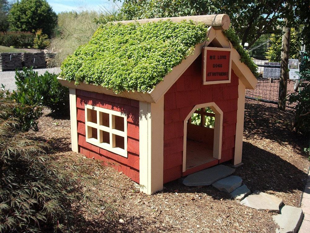Adorable dog house