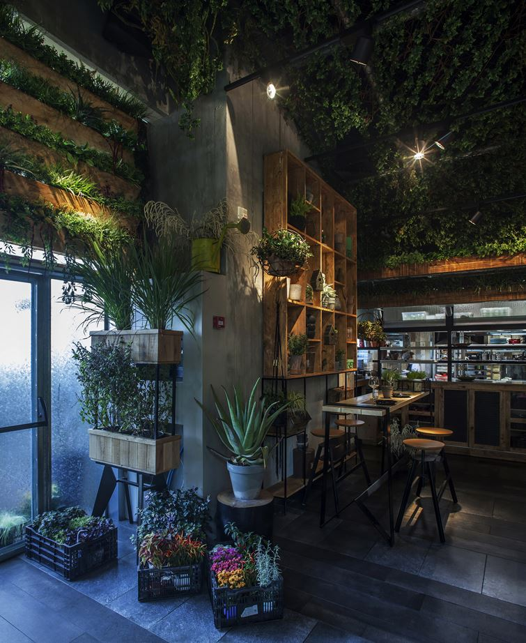 A Natural Restaurant Interior Design
