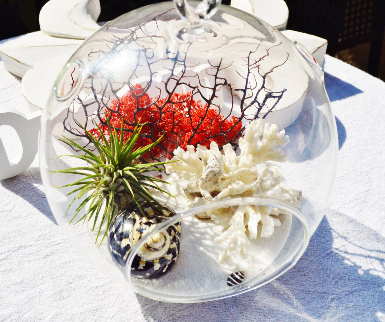 Minimalist beach glass terrarium