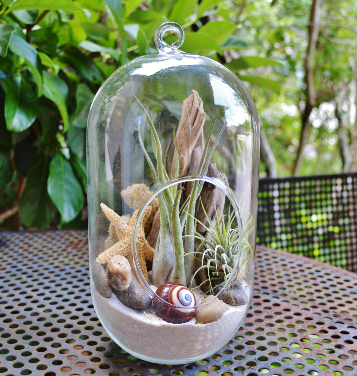Summer Vibe With Beach Terrariums