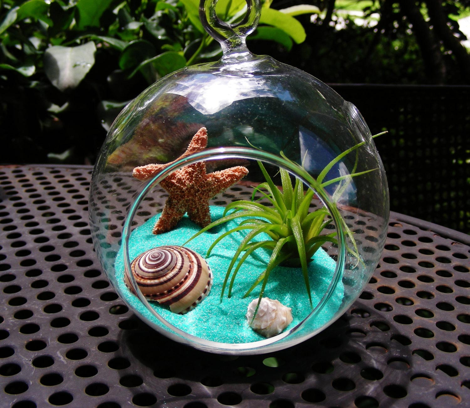 Summer Vibe With Beach Terrariums Adorable Home