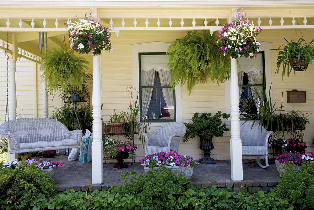 Porch Plants And Flowers