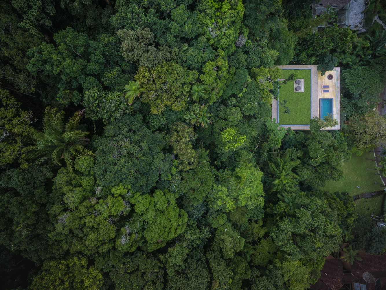 Jungle house from above