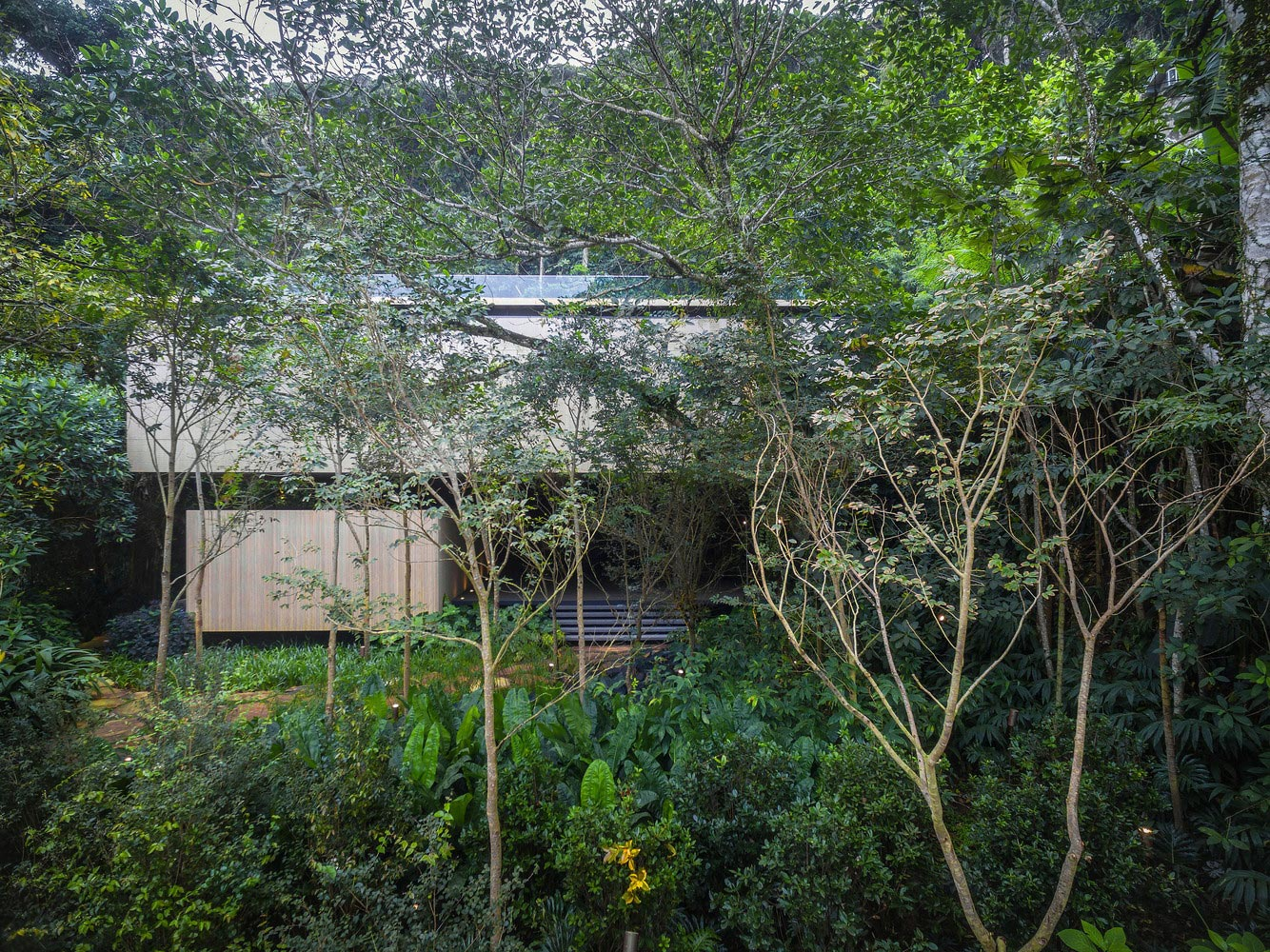 Jungle house side view