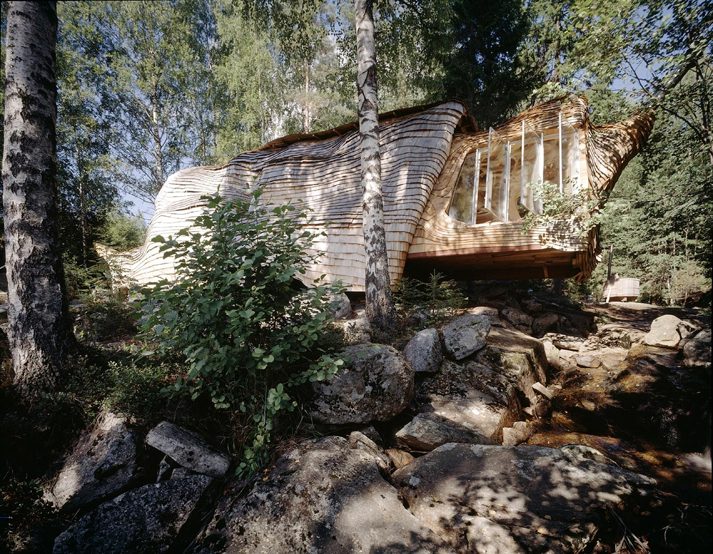 Incredible architecture of a forest house