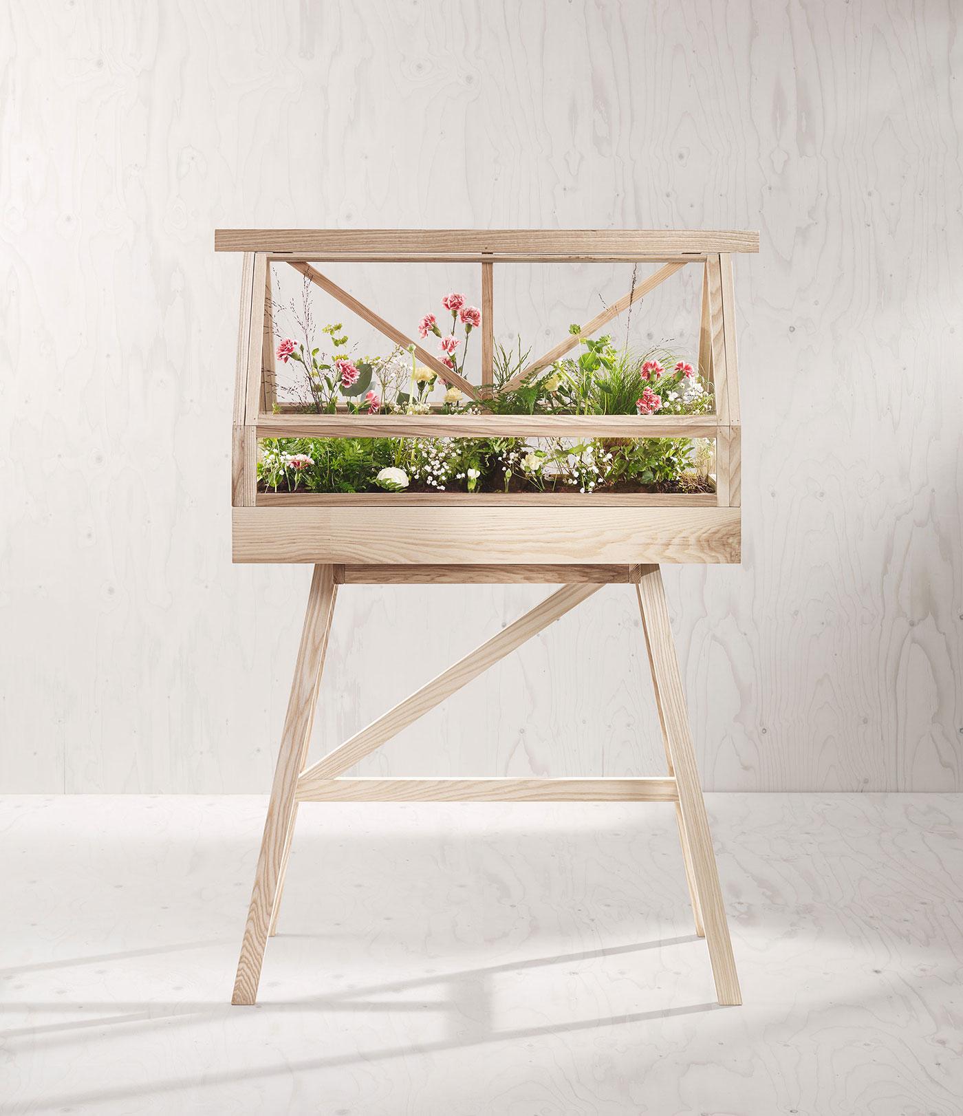 Indoor garden with flowers
