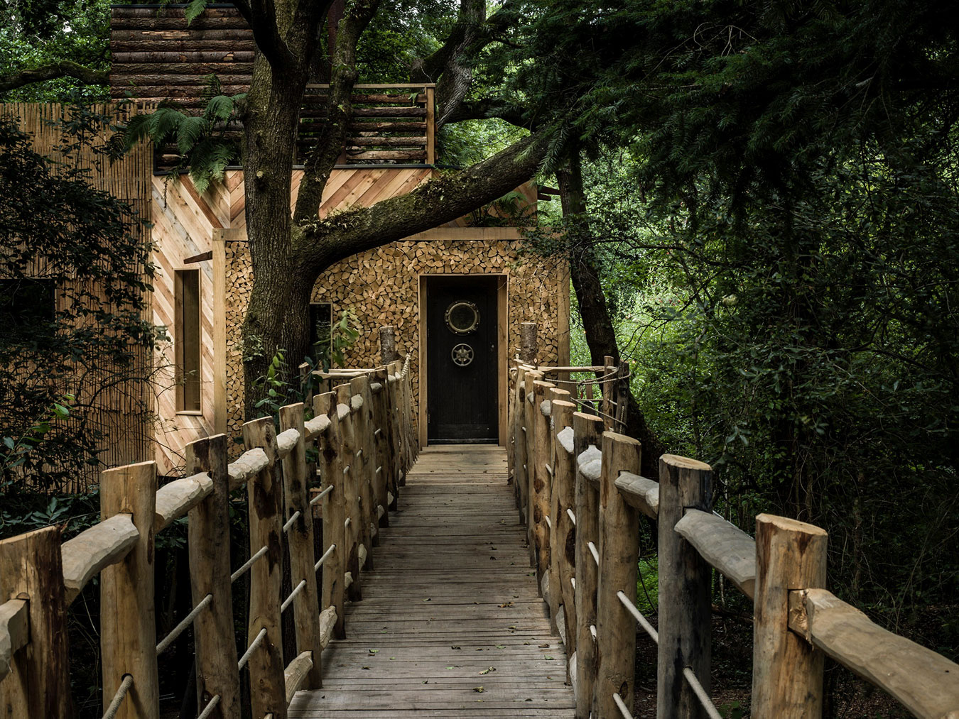 Tree house entrance