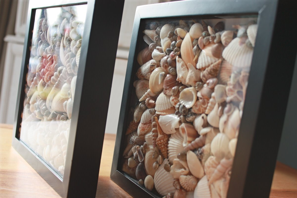 DIY Beach Inspired Home Décor-Seashell Shadowboxes
