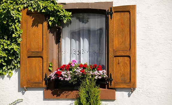 Beautiful Window Decorations for Summer
