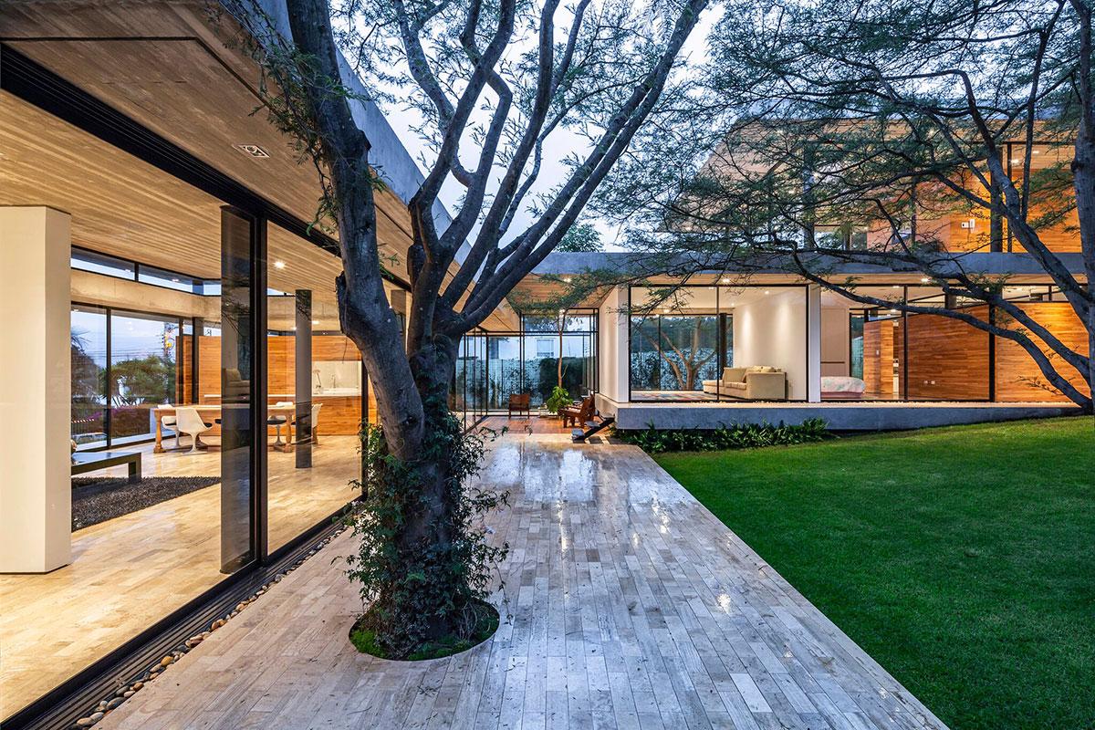 House among trees