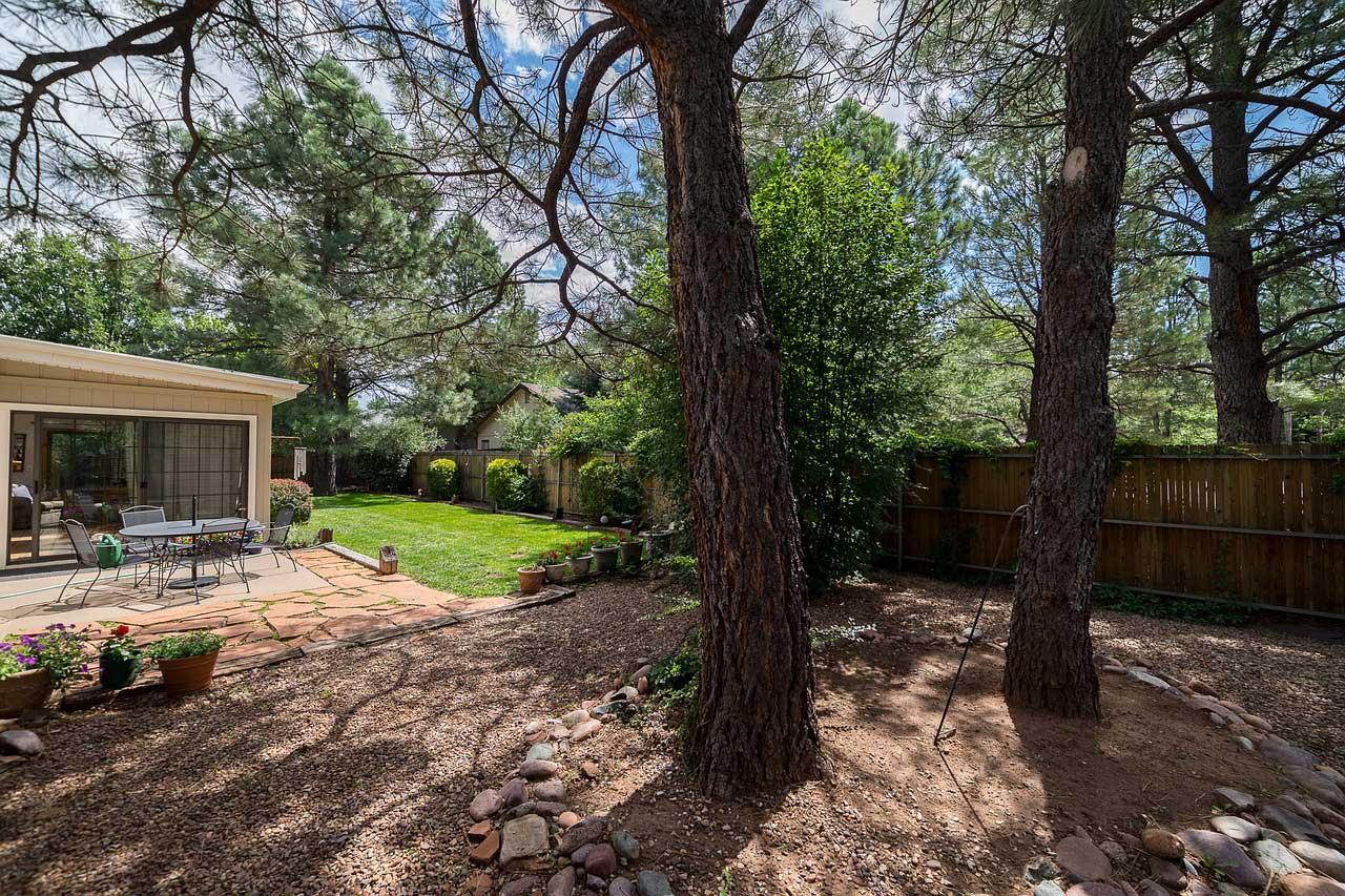 Yard with big trees