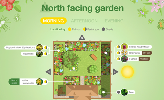 Planting Guide for Different Garden Aspects