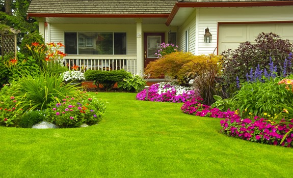 5 Tips for Creating the Garden of Your Dreams