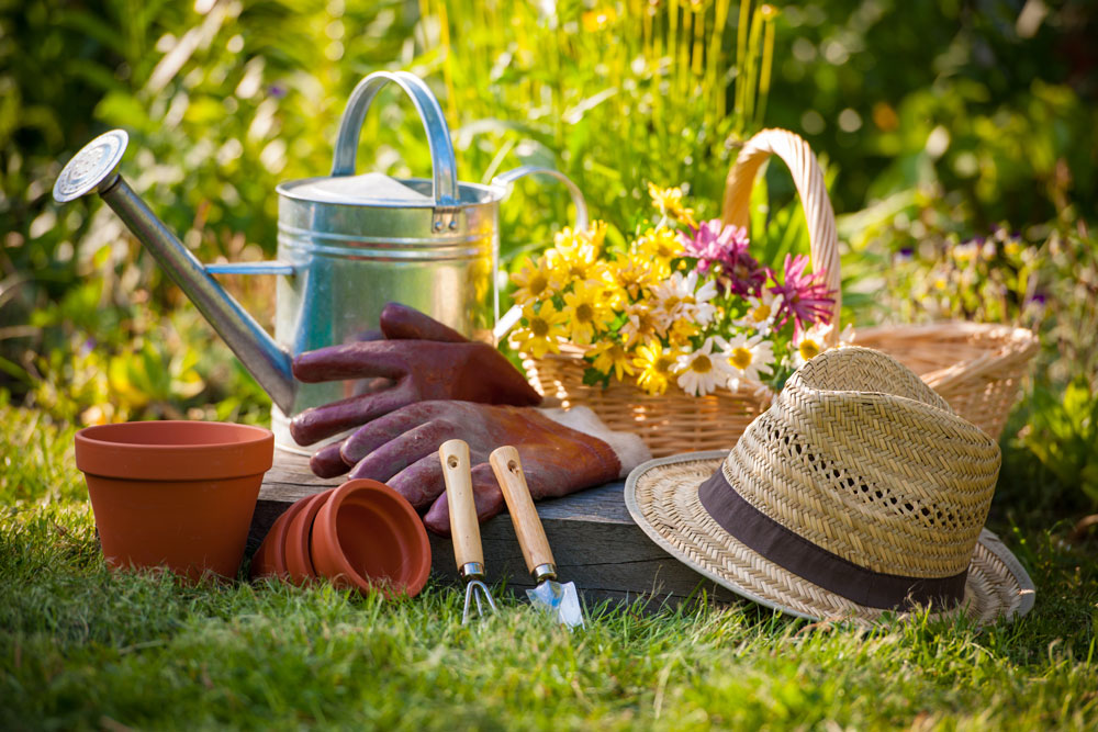 Gardening tasks