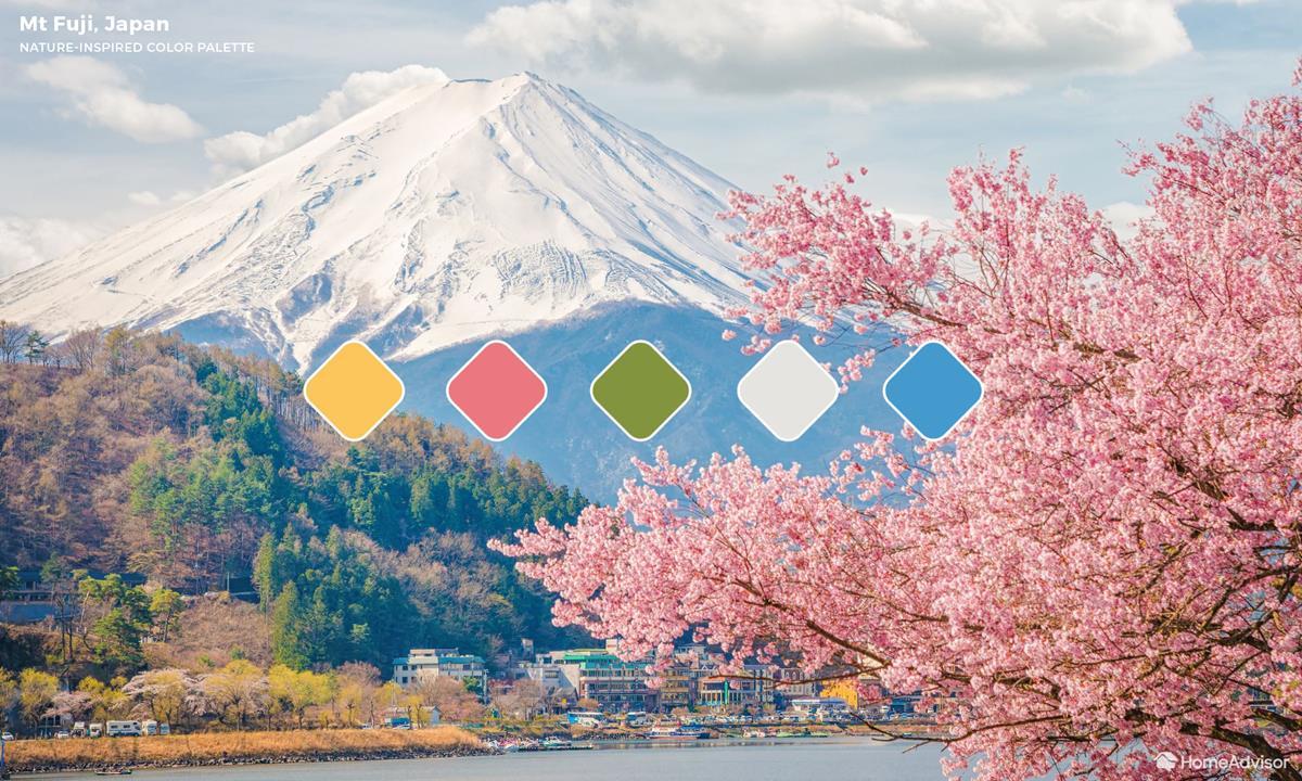 Mount Fuji Color Palette