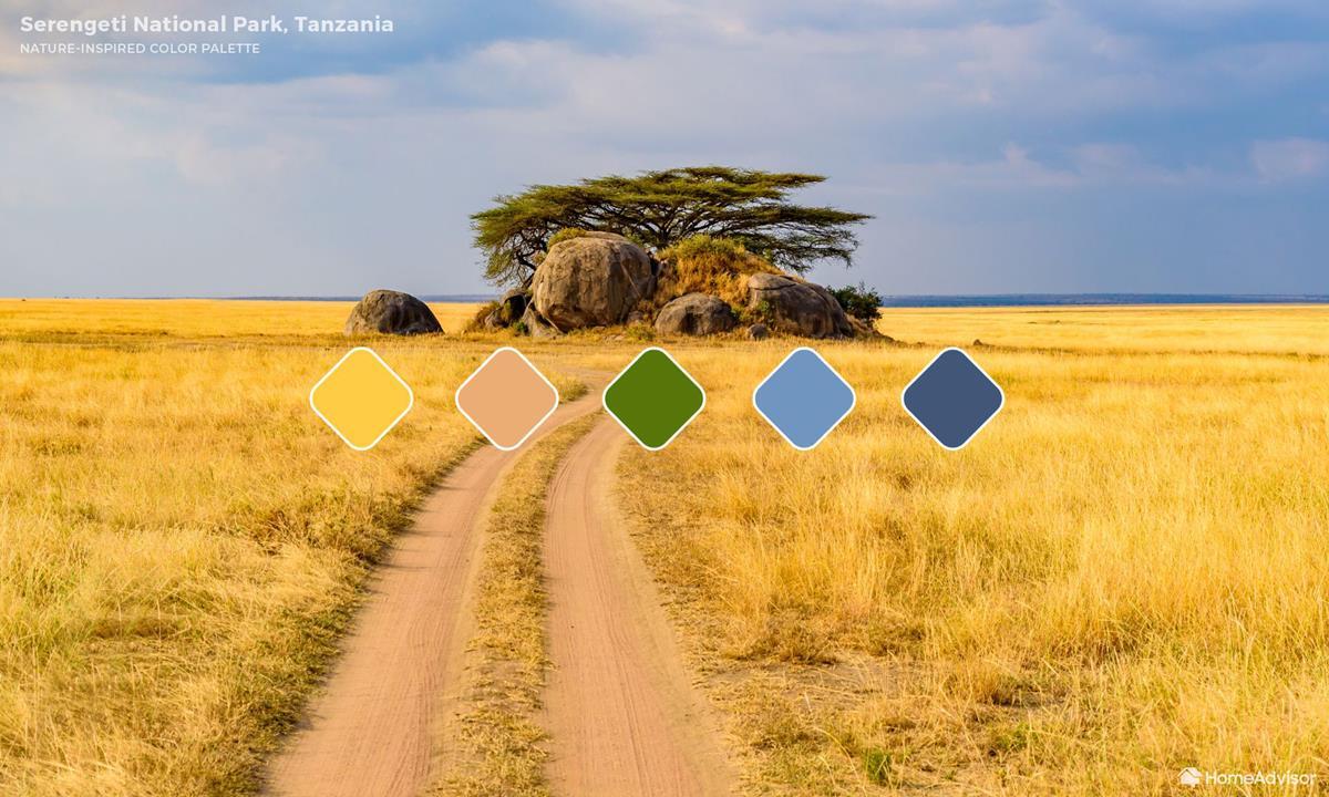 Serengeti Color Palette