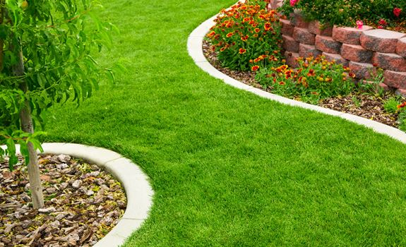5 Tips for Protecting Your Backyard Garden from Soil Erosion